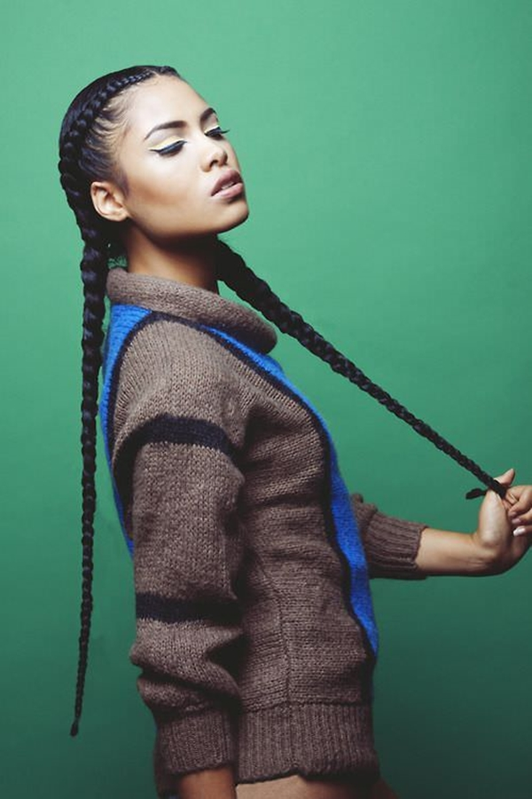 Phenomenal 20 Best Braided Hairstyles For Black Girl Hairstyles For Women Draintrainus
