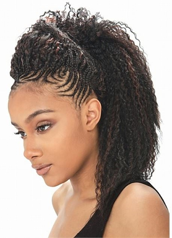 70 Best Black Braided Hairstyles That Turn Heads in 2017