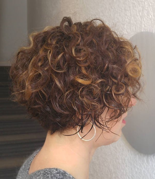 55280816-short-curly-hairstylesshortcurlybrunettebob